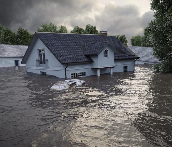 Storm Damage 5 Steps to Prevent Mold Growth After a Flood