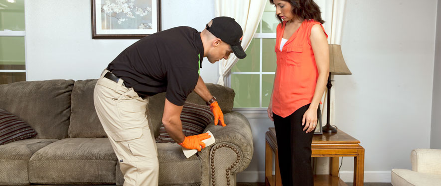 Vancouver, WA carpet upholstery cleaning